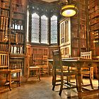 """Quiet Please in the Library"" by Stephen Knowles"