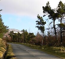 Road to Mount Leinster,County Carlow. by Pat Duggan
