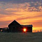 Montana Sunset by Kim Barton