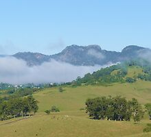 Morning Mist Over Gloucester, NSW. by Margaret Stockdale