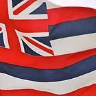 Hawaiian Flag by Oksana Fox