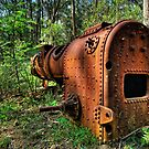 Seen Better Days Mount Wilson by DavidIori