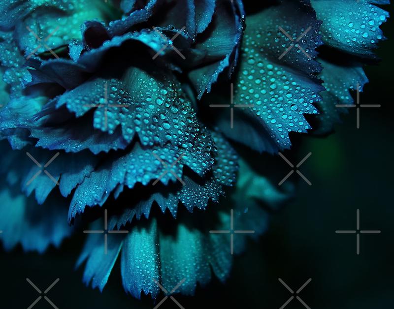 Powder Blue by Ingz