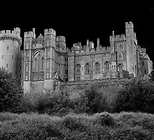 Arundel Castle by Barry Goble