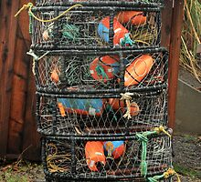 Tall stack of Crab pots - Sonoma Coast by Aggiegirl