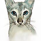 Barbara's Cat by Roz McQuillan