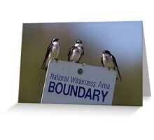 Border Patrol Greeting Card