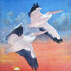 Pelicans at Sunset by Faye Doherty