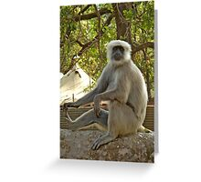 Yoga Monkey Greeting Card