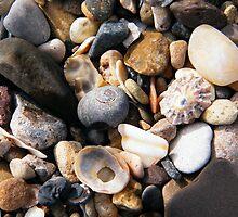 Gravelly Beach 2 by TREVOR34