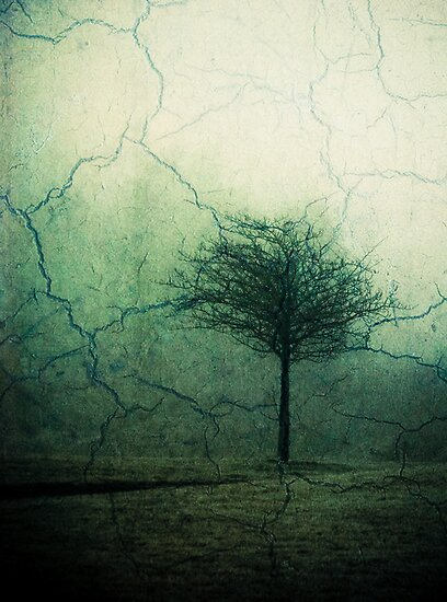 places in my mind by Jen Wahl