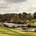 Shobrooke Park, Crediton, Devon by Squealia