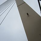 Dartford Bridge Collection - Looking up. by ellismorleyphto