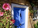 Hollyhocks stand tall beside blue cottage door by hjaynefoster