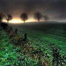 Evergreen by De-aRt