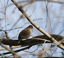 Lonesome Dove by JpPhotos