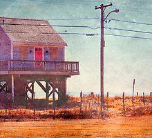 Cape Cod Beach House by Tania Palermo