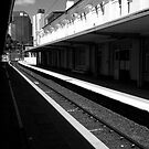 Roma Street Station - B&amp;W by technokitty