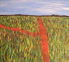 Echidna tracks South Kimberley desert region by Trev Sutton