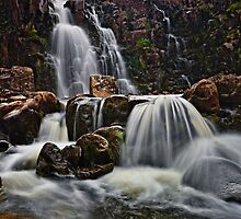 Bleabeck Force by David Lewins