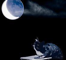 La Lune by vladimirkis
