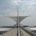 Milwaukee Art Museum by AJ Belongia
