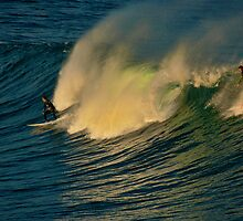 Waveriders at Bronte by Dianne English