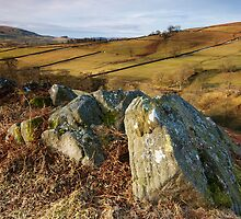 Hebden Rocks by Andrew Leighton