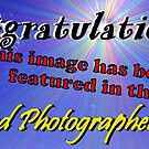 Weekend Photographer Featured Banner by Tori Snow