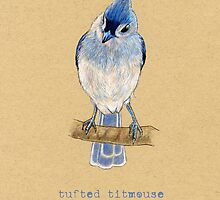 Tufted Titmouse Bird by Revelle Taillon