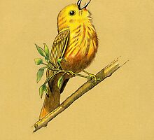 Male Yellow Warbler by Revelle Taillon