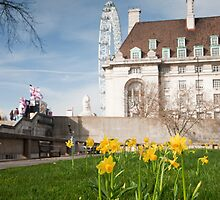 Springtime Hits London: London Eye. by DonDavisUK