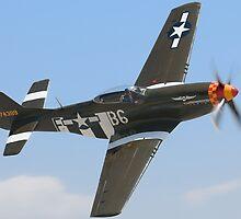 P-51D by gfydad