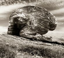 And A Rock Feels No Pain by Maxoperandi