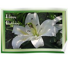 Happy Birthday Greeting Card With A White Lily   Poster