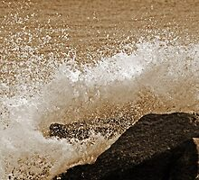 ... on the ROCKS with a SPLASH! by Terri~Lynn Bealle