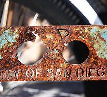 The City of San Diego by Tim Amundson