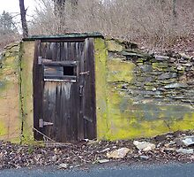 Root Cellar (Before Refrigerators) by clizzio