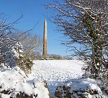Snowy Beacon by Lucan  Netley (LDN Photoart)