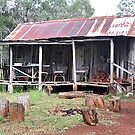 Rustic Shack - Nundle NSW Australia by Bev Woodman