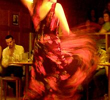 Flamenco II by elisabeth tainsh
