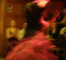 Flamenco Nights by elisabeth tainsh