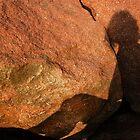 Girl on a rock by Lynette Higgs