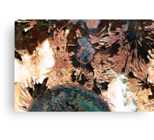 Southern Solstice Canvas Print