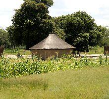 Namibian Home by Sheila Smith