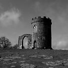 Bradgate Park - Old John by Mike Topley