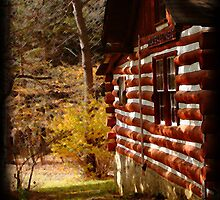 Red Log Cabin  by vigor