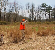 HUNTER FIRES AT A COVEY OF QUAIL  by Wayne Hughes