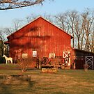 Buster & Peaches Barn by Geno Rugh