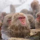 A hot soak by Anne Young